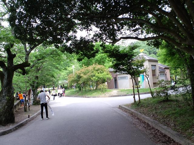 明日第24回京都チャリティ・ファンラン