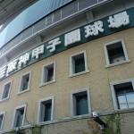 明日ユニセフカップ2011西宮国際ハーフマラソン開催