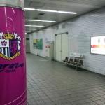 明日第48回大阪スポーツ祭典30kmロードレース開催